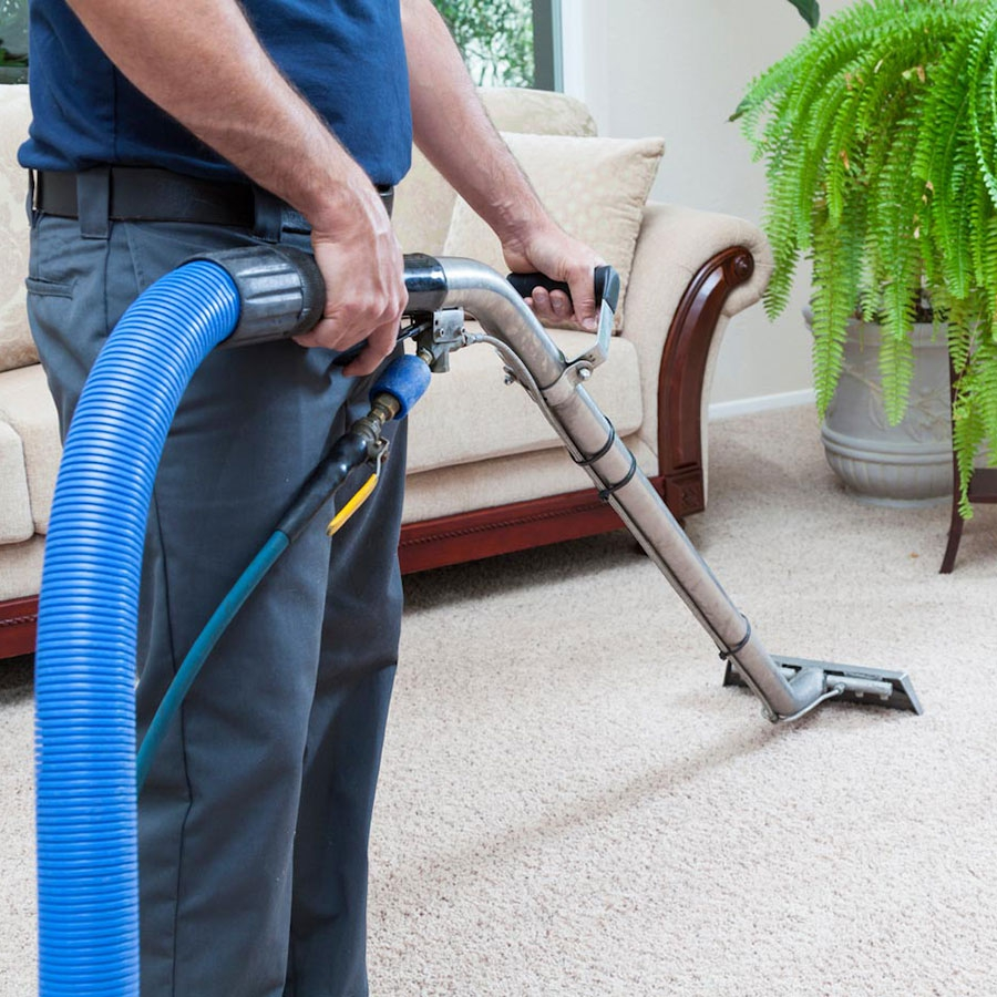 Carpet & upholstery cleaning